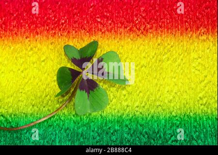 The picture shows lucky clover on colorful crepe paper - Stock Photo