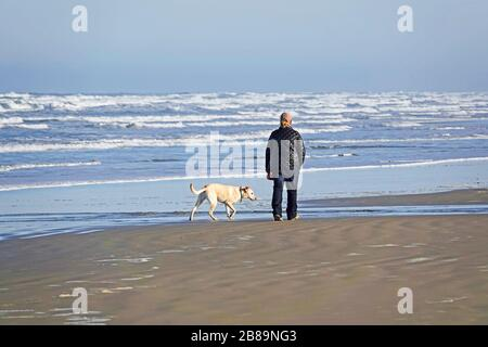 A woman walking her dog along a stretch of empty beach on the Oregon Pacific Coast near the town of Yachats, Oregon. - Stock Photo