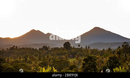 Beautiful views of the forest and mountains at sunrise in the countryside