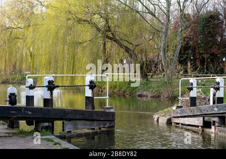 View of the Grand Union Canal at Berkhamsted, Hertfordshire UK. Photographed on a pleasant afternoon in spring. - Stock Photo