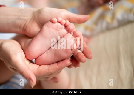 Mother's hands hold the infant's legs. The child's foots are in mom's palms. - Stock Photo