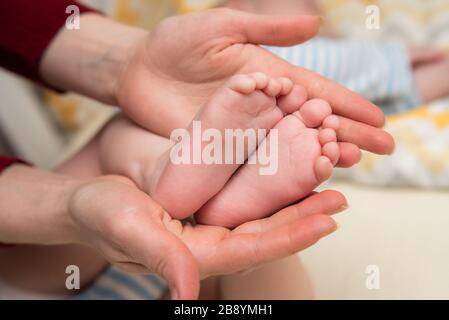 Mother's hands hold the baby's legs. The toddler's foots are in mom's palms. - Stock Photo