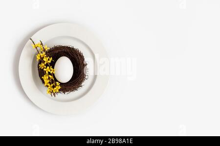 Easter beautiful table setting with a chicken egg in a nest and a yellow flower forsythia on a plate on a white background. Space for text. Top view - Stock Photo