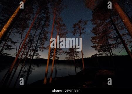 Night at Evo hiking area, Hämeenlinna, Finland - Stock Photo