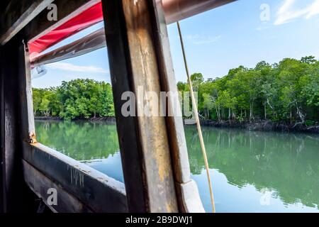 View of mangroves & water from open long-tail boat windows on Ko Yao Noi, an island off Phuket in southern Thailand - Stock Photo