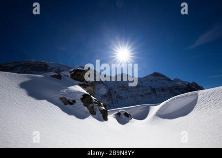 Awesome winter landscape with spruces covered in snow. Frosty day, exotic wintry scene. Magic Carpathian mountains, Ukraine, Europe. Winter nature wal - Stock Photo