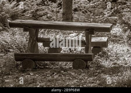 A greyscale of an old wooden table with two benches in a field under the sunlight - Stock Photo