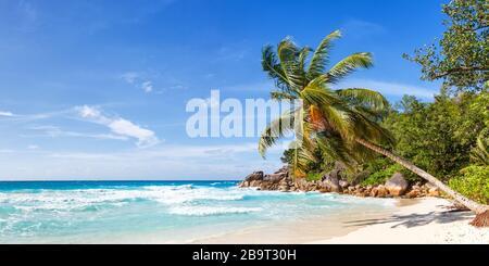 Seychelles Anse Georgette beach Praslin island palm panoramic view vacation paradise ocean sea water