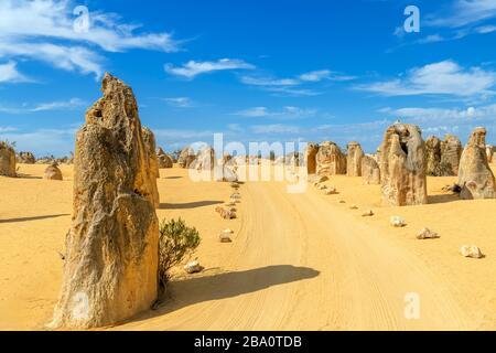 Dirt road through The Pinnacles, Nambung National Park, Cervantes, Western Australia, Australia