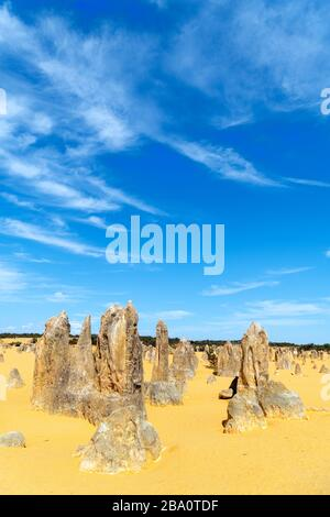 The Pinnacles, Nambung National Park, Cervantes, Western Australia, Australia