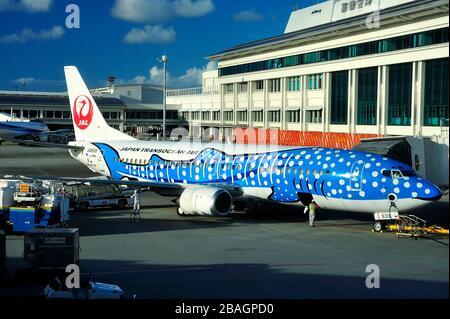 Blue Whaleshark, Boeing B-737/400, JA8939, Japan Transocean Airline, JTA, Naha Airport, Okinawa, Ryukyu Islands, Japan