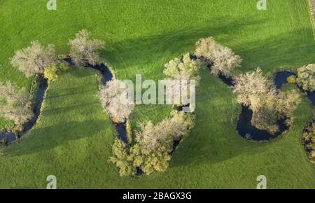 river Salzbach near river Ahse at Sueddinker, 2013, aerial view, Germany, North Rhine-Westphalia, Sueddinker - Stock Photo