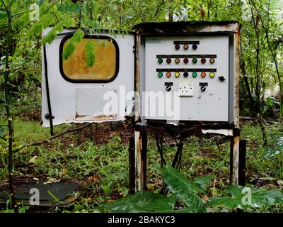 Electrical old switch box outdoor in the rainforest surrounded by lush plants, Mahe, Seychelles - Stock Photo