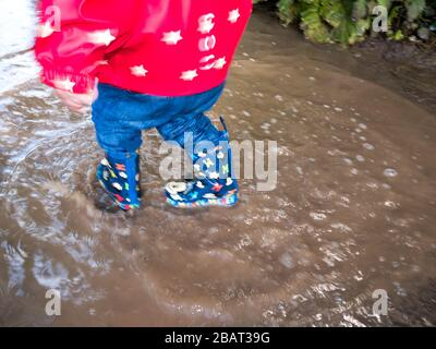 Family fun in puddles - Stock Photo