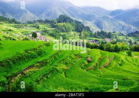 The Yunhe Cloud Rice Terraces and mountain landscape China - Stock Photo