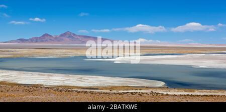 Salar (Salt Flat) de Tara at nearly 16,000 feet (4800 meters) in Andes Mountains and Altiplano of Atacama Desert, Reserva Nacional los Flamencos - Stock Photo