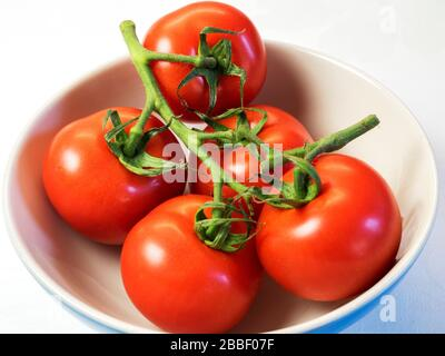 Five tomatoes on the vine in a bowl - Stock Photo