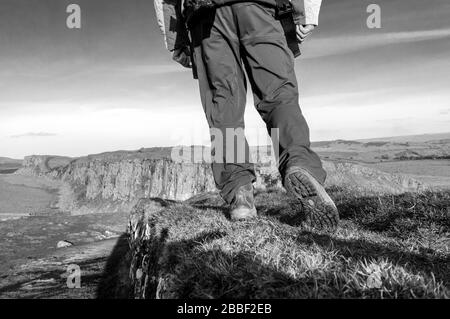 Black and white photograph of   Man walking ontop of  Hadrian's Wall at Steel Rigg, Northumberland, England, UK - Stock Photo
