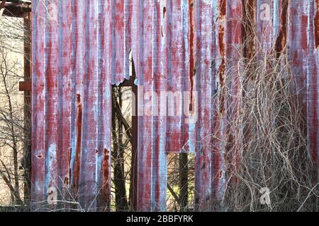 a old metal red warehouse building broken and overgrown - Stock Photo