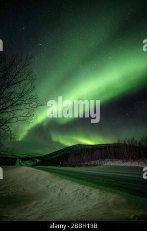 Aurora dancing in Norway skies under winter skies over the road - Stock Photo