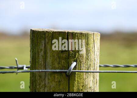 Barbed wire around a wooden fence - Stock Photo
