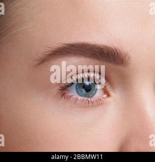 Eyebrows Care. Closeup Of Woman Beautiful Blue Eye, Perfect Shaped Brow, Long Eyelashes With Professional Makeup And Brow Gel Brush. Young Female Mode