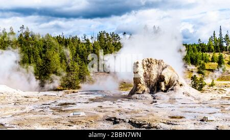 Steam and water percolating in the Upper Geyser Basin along the Continental Divide Trail in Yellowstone National Park, Wyoming, United States