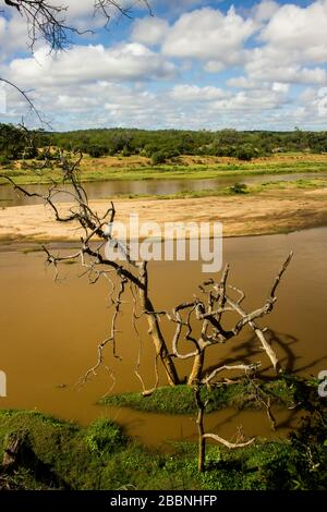 Early morning at the Olifants River, Kruger National Park, South Africa, on a sunny day with a dead tree from an old flood in the foreground - Stock Photo
