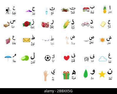 set of Arabic alphabet with image , vector - Stock Photo