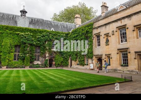 Lincoln College, Oxford, England, United Kingdom. July 2019. The College of the Blessed Mary and All Saints, Oxford University. Climbing plants - Stock Photo