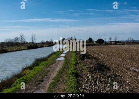 A woman cycling on a towpath along the Kennet & Avon canal in Wiltshire - Stock Photo