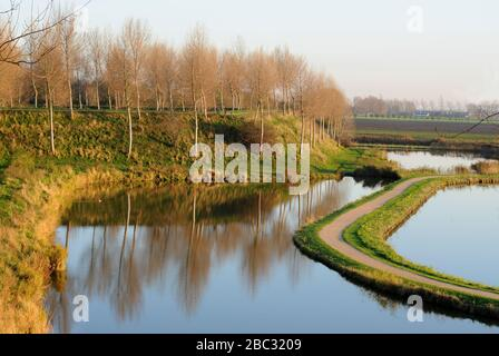 Polder view in Sluis, Zeeland, The Netherlands - Stock Photo