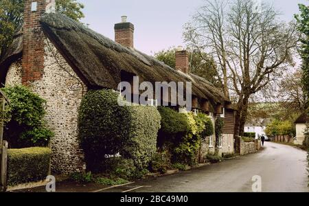 Beautiful old detached house thatched country cottage in the village of Ashmore, Dorset, England, UK in summer