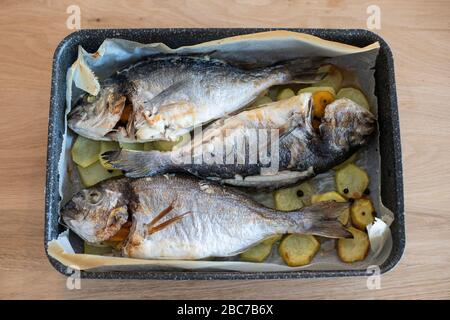 Three sea breams in a pan, baked and garnished with sliced potatoes, on a wooden floor. - Stock Photo