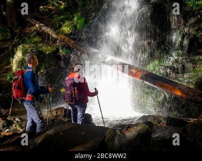 Hiking on the Zweälersteig, Zweribachfall, Bannwald Zweribach - Stock Photo