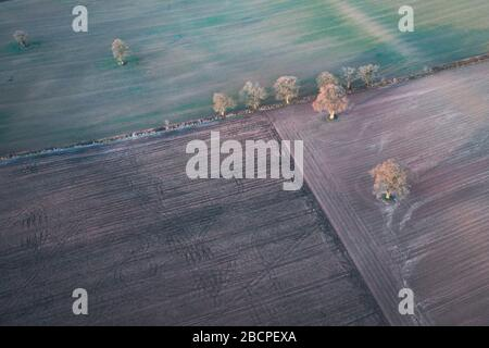 Aerial top dwon view over farming field textures at winter morning in United Kingdom - Stock Photo