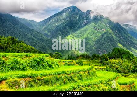 The dramatic Yunhe cloud rice terraces landscape in the summer in Zhejiang province China on a sunny day. - Stock Photo
