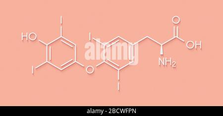 Thyroxine (T4, levothyroxine) thyroid hormone molecule. Prohormone of thyronine (T3). Used as drug to treat hypothyroidism. Skeletal formula. - Stock Photo