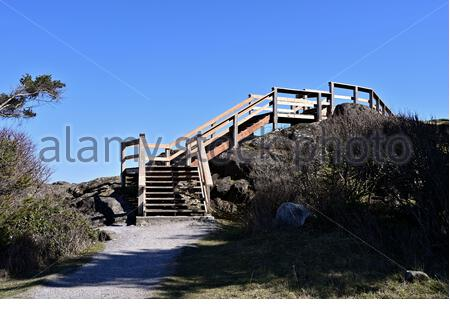 Looking at footpath leading up to elevated walkway passing over extreme terrain on top of a hill along the coastline of Vancouver Island - Stock Photo