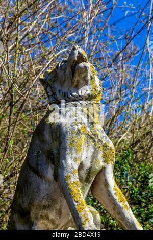 One of the two Dogs of Alcibiades sculptures guarding the Bonner Gate entrance to Victoria Park, London, UK - Stock Photo