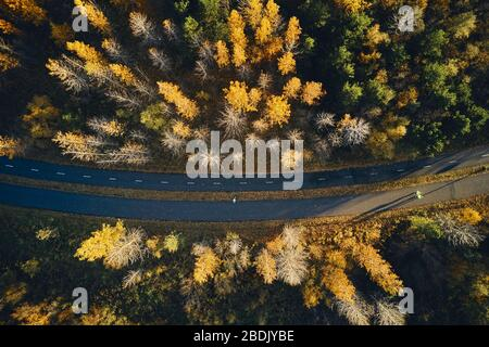 Top view of asphalt road with people running through autumn forest with green and yellow trees on sunny day in Iceland - Stock Photo