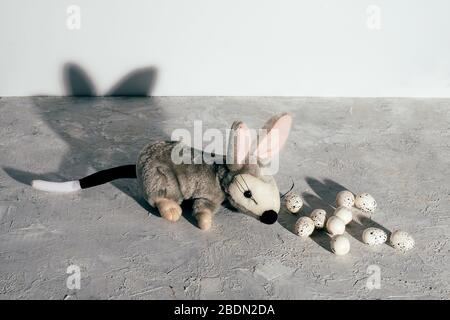 Australian milk chocolate Bilby quail eggs with eggs on grunge gray background. Easter concept. - Stock Photo