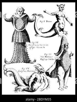 Sea Monsters, Legendar Creatures - Stock Photo