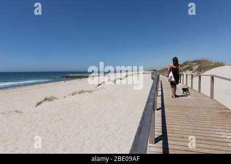 Woman and dog walking at wooden boardwalk at the beach at Costa Nova do Prado Ilhavo near Aveiro Portugal. - Stock Photo