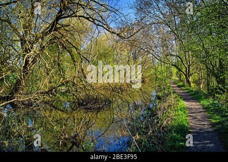 UK,South Yorkshire,Barnsley,Elsecar Canal and Footpath