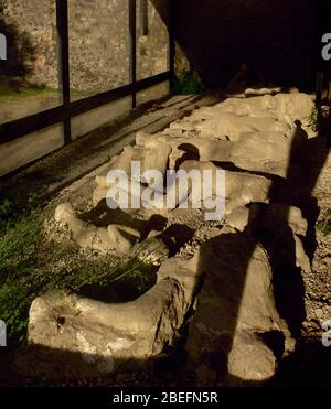 Plaster casts of victim's bodies at the Garden of the Fugitives. - Stock Photo