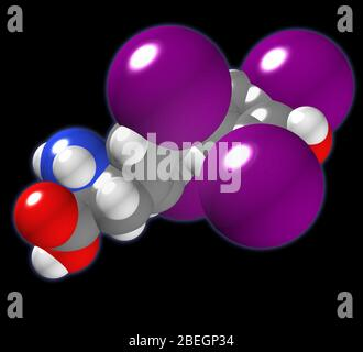 Thyroxine - Stock Photo