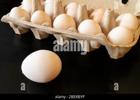 The Chicken egg in sulphur to packing from paperboard. Fresh products of the feeding on dark background