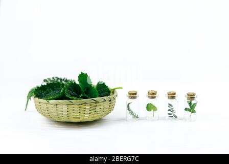 Bottles and wicker bowl with fresh herbs on wooden background. Alternative herbal medicine. - Stock Photo