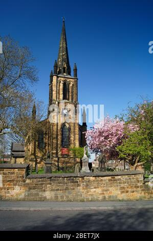 UK,South Yorkshire,Elsecar,Holy Trinity Parish Church in Spring with Cherry Blossom in full bloom